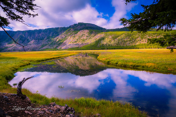 August 2015 Yellowstone National Park