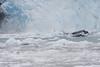 Frigid waters at foot of glacier..
