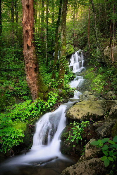 Upper Tremont Falls