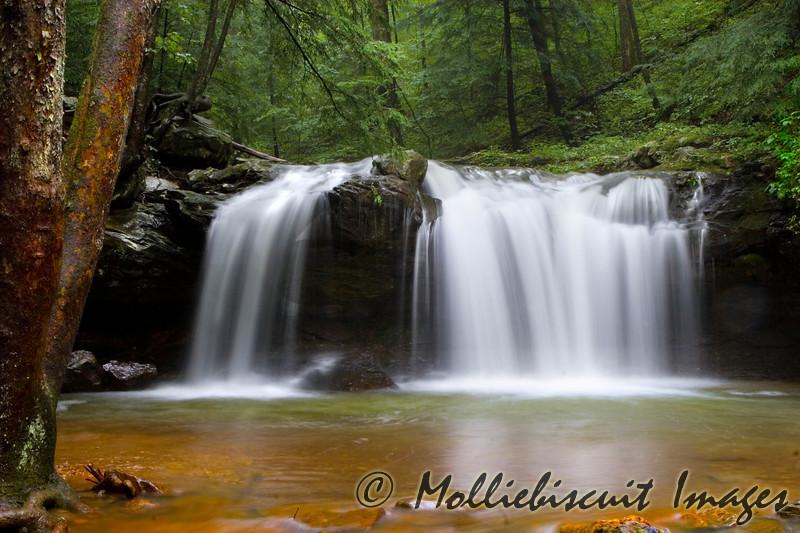 DeBord Falls