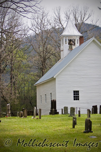 Primitive Baptist in the Cove