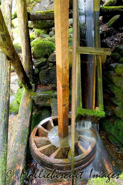 """Waterwheel"" Reagan's Mill at Roaring Fork"
