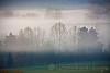 Tiers of Mist