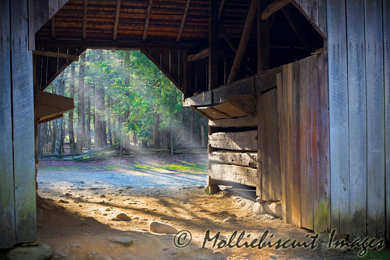Morning light and barn. Taken in Cades Cove.