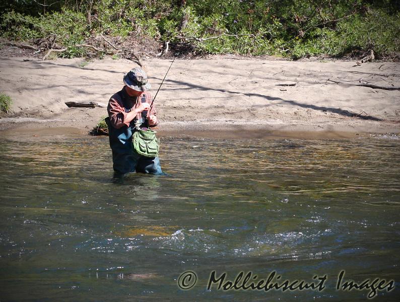 Fly fishing near Cherokee, NC