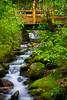 Lower Tremont Falls