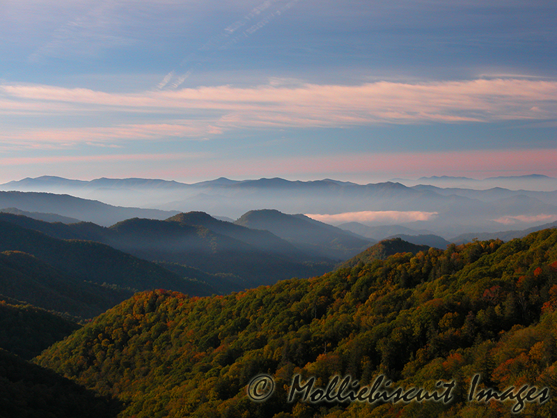"""""""Colors"""" Early morning with the sun coming from low in the sky. Early fall colors are starting to show."""