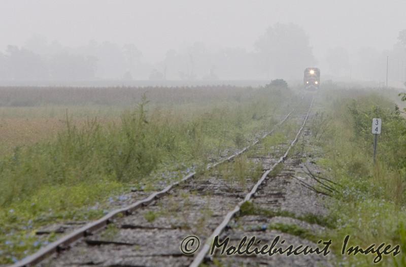 Train & Fog