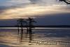 """Isle of Cypress"" at sunrise"