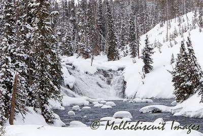 Lewis Falls in Yellowstone