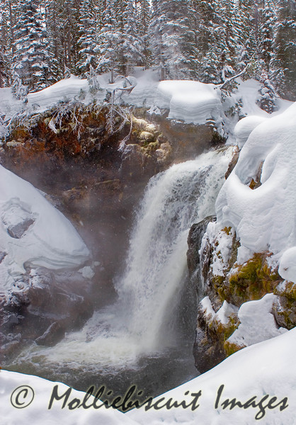 Moose Falls....A secluded falls with winter color on rock.
