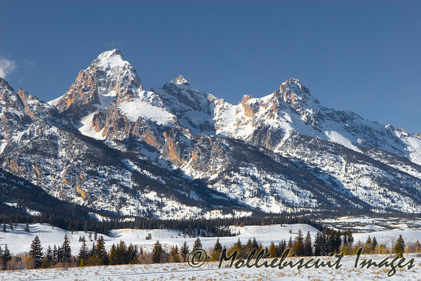 Grand Tetons in Full Afternoon Sun