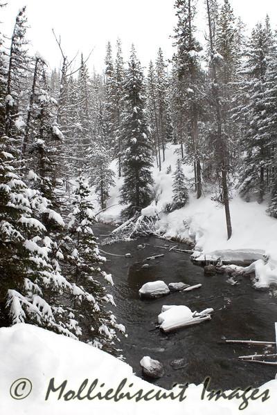 Runoff from Moose Falls