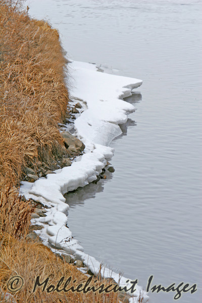 Grass, snow, ice, and water form an interesting pattern on Flat Creek.