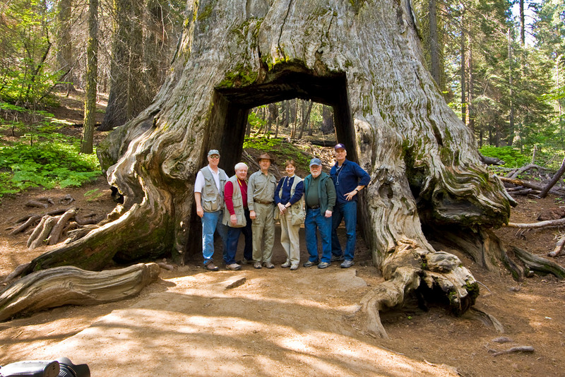 Redwood grove and Friends @ F/8 June 2009; <br /> L to R: Tom Gallien, Myron Rice, Tom Pope, Carol Behrmann, Dwain Shaw and Bob Watters.