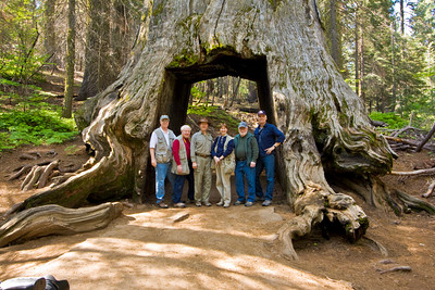 Redwood grove and Friends @ F/8 June 2009;  L to R: Tom Gallien, Myron Rice, Tom Pope, Carol Behrmann, Dwain Shaw and Bob Watters.