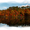 Fall colors on the trees along a lake - paintography