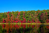 Colorful trees lining lake in the Fall