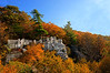 "Coopers Rock overlook in the fall <a href=""http://dan-friend.artistwebsites.com/index.html"">http://dan-friend.artistwebsites.com/index.html</a>"