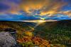 """A blue and gold sunset <a href=""""http://dan-friend.artistwebsites.com/index.html"""">http://dan-friend.artistwebsites.com/index.html</a>"""