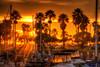 "Sun setting at marina <a href=""http://dan-friend.artistwebsites.com/index.html"">http://dan-friend.artistwebsites.com/index.html</a>"