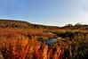 "Beautiful clear crisp fall day Canaan Valley <a href=""http://dan-friend.artistwebsites.com/index.html"">http://dan-friend.artistwebsites.com/index.html</a>"