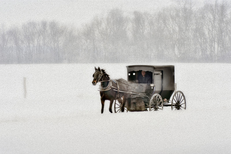 "Horse and buggy in snow storm <a href=""http://dan-friend.artistwebsites.com/index.html"">http://dan-friend.artistwebsites.com/index.html</a>"
