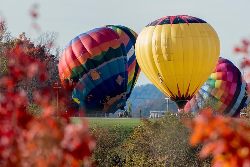 Hot air balloons lift off