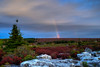 Rainbow at Dolly sods in morning
