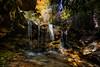 Beautiful small stream in West Virginia