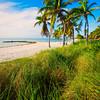 DSC09702 David Scarola Photography, Key West