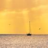 DSC08535 david Scarola photography, sunset grille in the florida keys