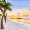 DSC09165 david Scarola Photography, Dec 2017, Key West