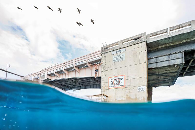 DSC05305 David Scarola Photography, Cato's Bridge, Jupiter Florida, aug 2017