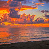 DSC07059 David Scarola Photography