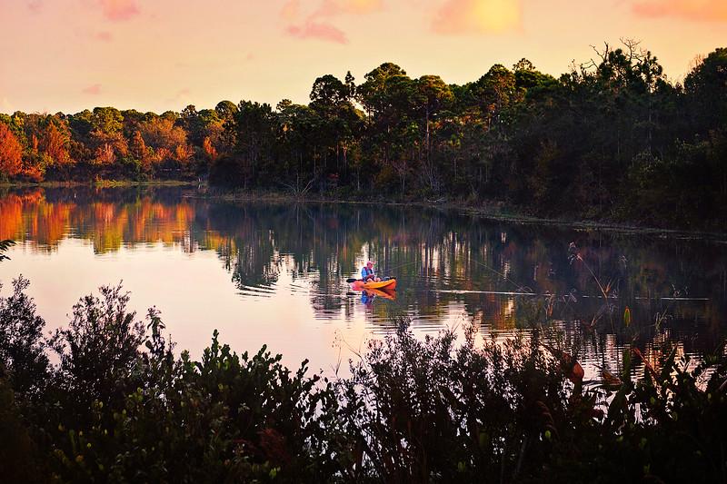 DSC00214 David Scarola Photography, Jupiter Florida, Abacao Nature Preserve, sep 2017, web