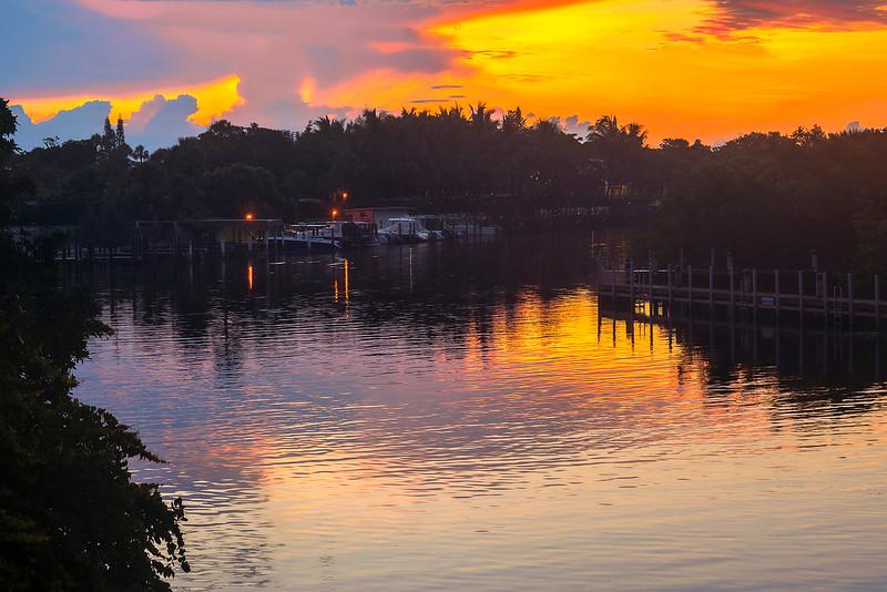 DSC08400 David Scarola Photography, Guanabanas, Jupiter Florida, sep 2017