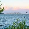 DSC08688 David Scarola Photography, Miami Skyline, sep 2017