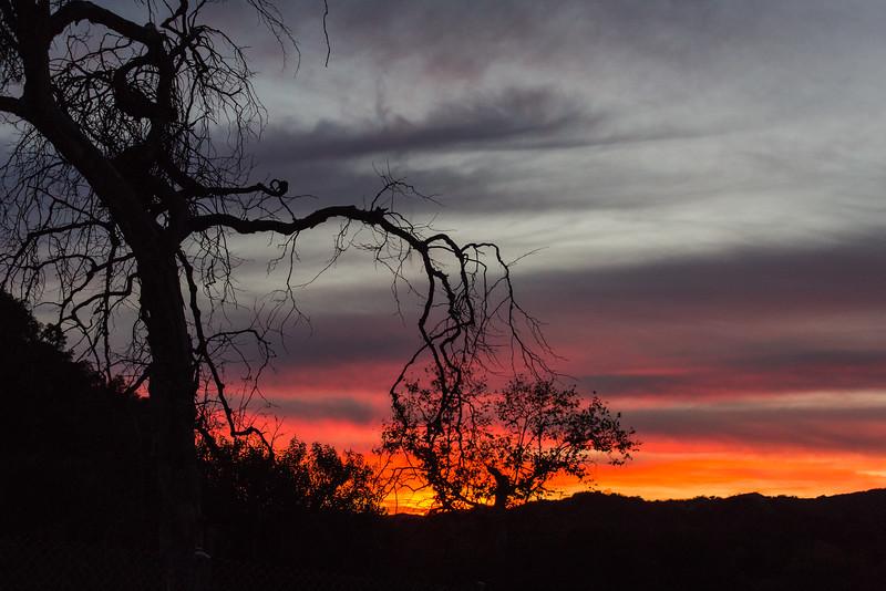 Trabuco Canyon Sunset Darkness