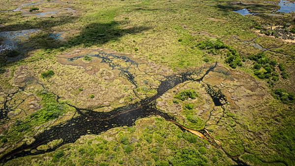 Aerial landscape photograph of the Okavango Delta swamp in Botswana,