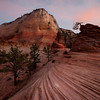 """ZION TWILIGHT"""