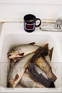 Kitchen Sink in Wyoming