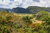 Volcanic Mountains, Western Cuba