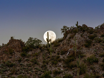 Full Moon Setting Dinosaur Mt, AZ