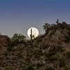 Full Moon Setting Dinosaur Mt, AZ