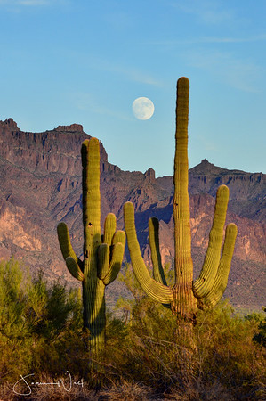 Almost full moon above the Superstitions at dusk