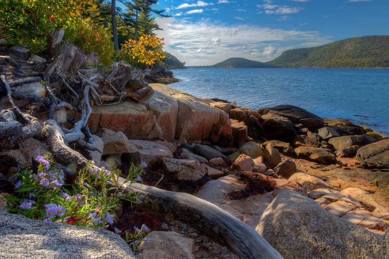 Somes Sound Shoreline