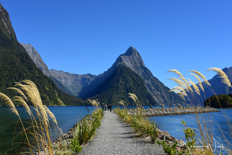 Mitre Peak, Milford Sound New Zealand