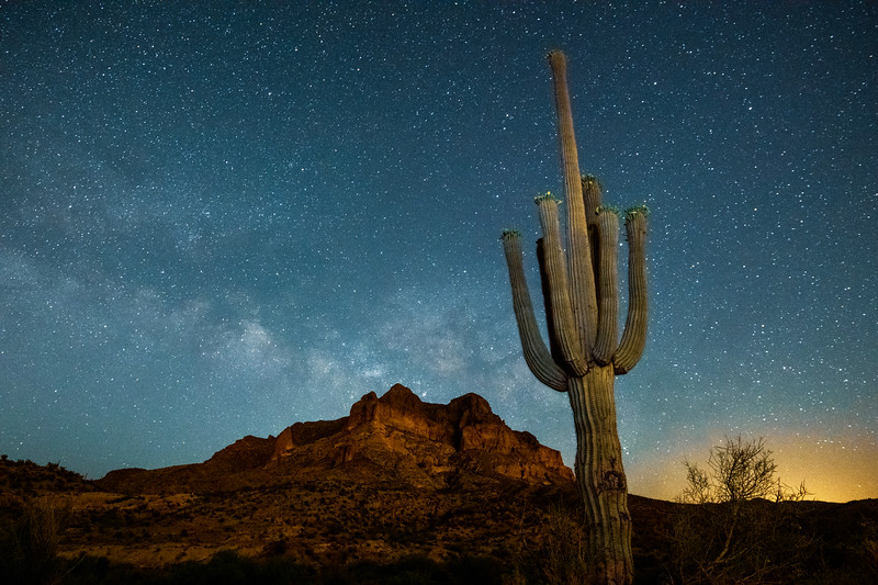May Milky Way with Saguaro Cactus Blooming