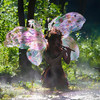 """TWIG THE FAIRY:  MISTY MUSICAL MORNING"""